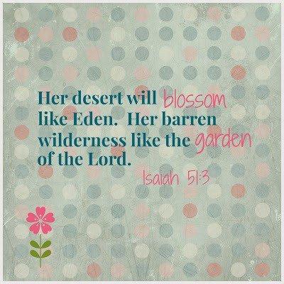 Deserts-Will-Blossom
